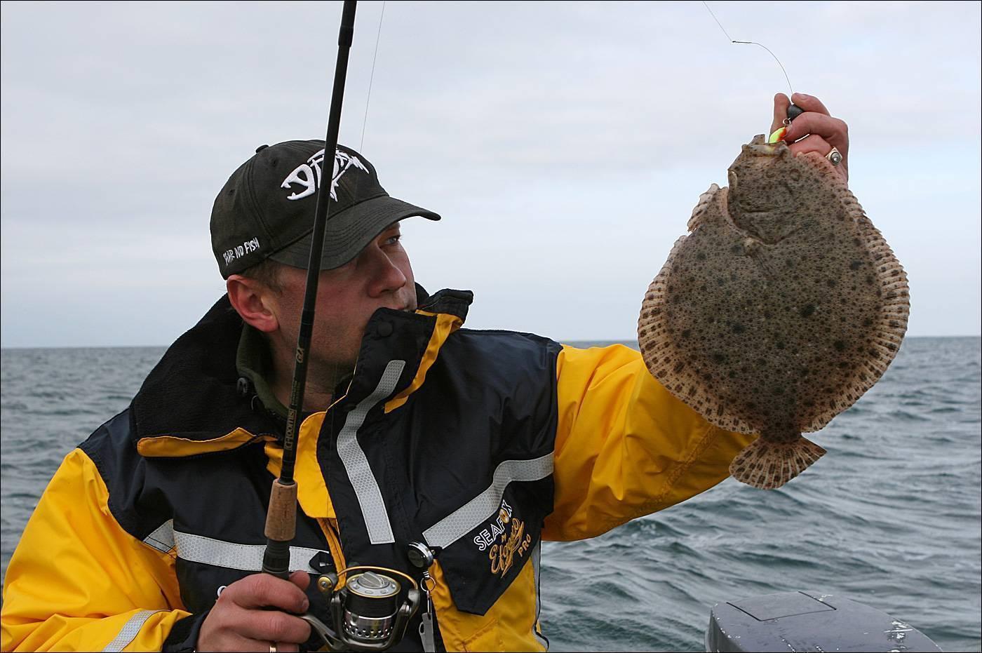 Ловля камбалы и ее хитрости – рыбалка