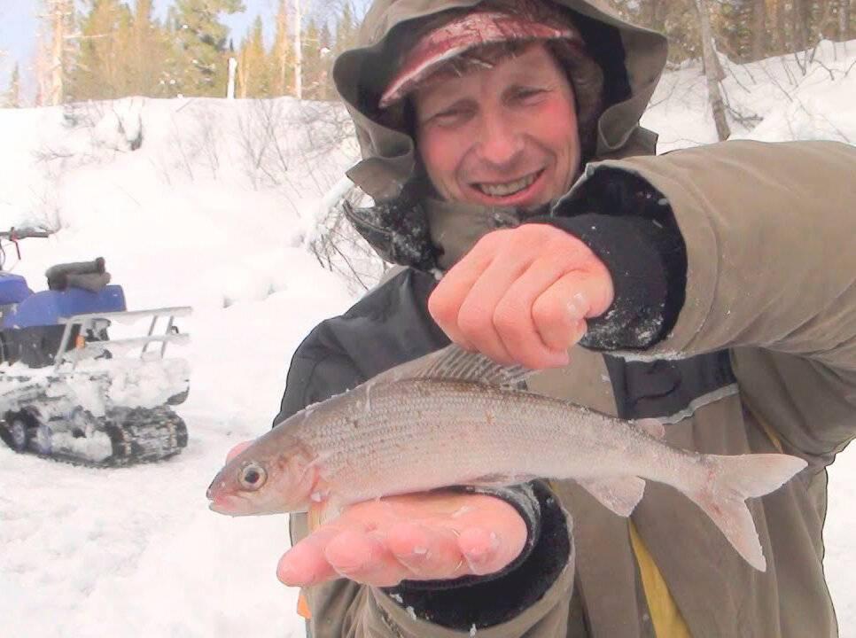 Рыбалка на енисее.
