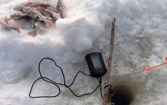 Выбираем эхолот для зимней рыбалки — характеристики и популярные модели