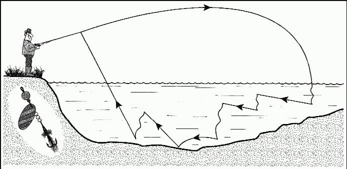 Спиннинг для начинающих - выбор снастей и мест ловли на спиннинг