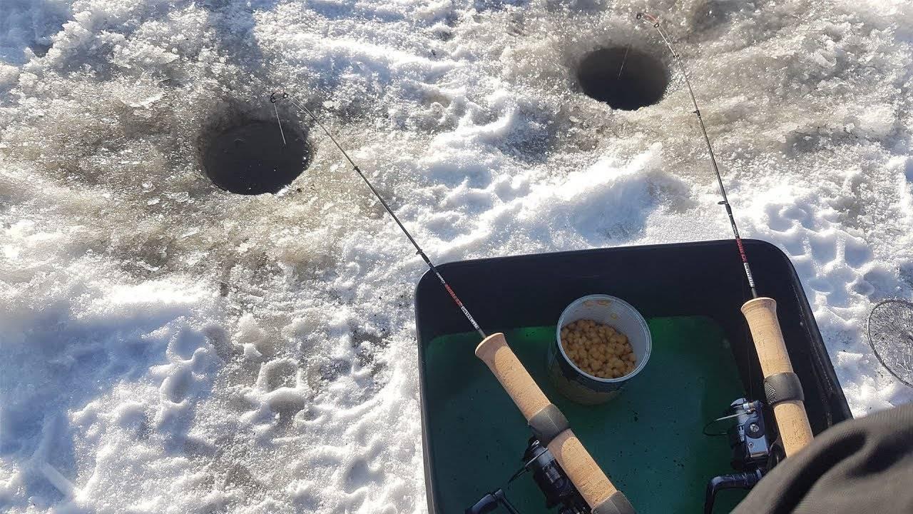 Снасть на сазана для ловли на течении