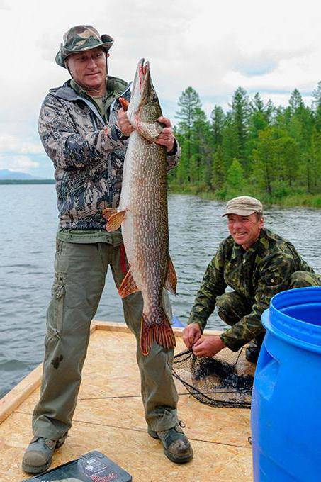 Рыболовный тур по рекам и озерам тывы - читайте на сatcher.fish
