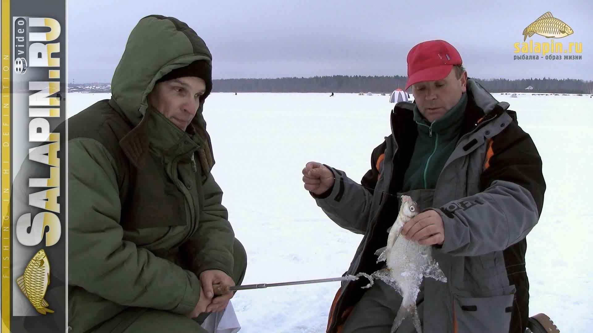 Ловля леща в феврале: топ снасти, насадки, прикормки, тактика