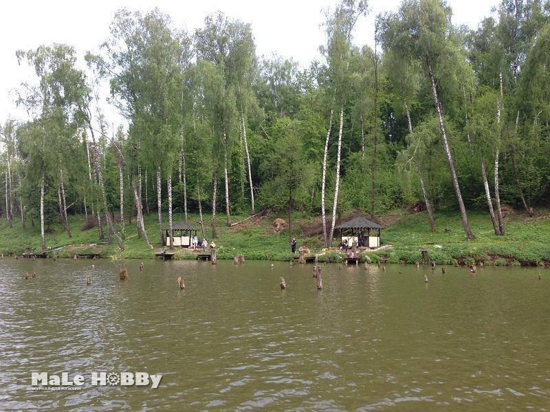 Платная рыбалка в рыболовном парке лагуна, отзывы, домики, адрес и схема проезда