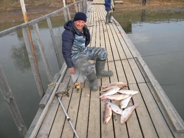 Платная рыбалка в подмосковье без нормы вылова: обзор водоемов