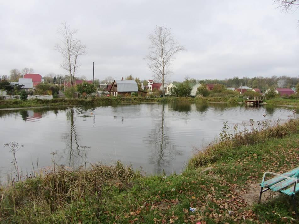 Рыбалка в лыткино (солнечногорский район московской области): как доехать, нормы вылова