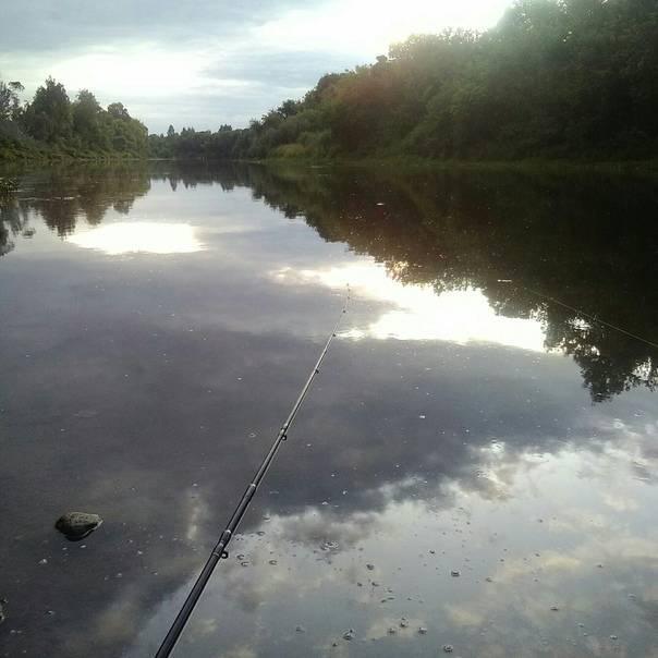 Рыбалка в смоленской области и в смоленске - fishingwiki