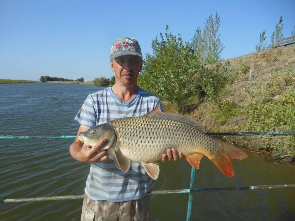 Рыбалка и отдых в астрахани по временам года и месяцам - когда лучше ехать?