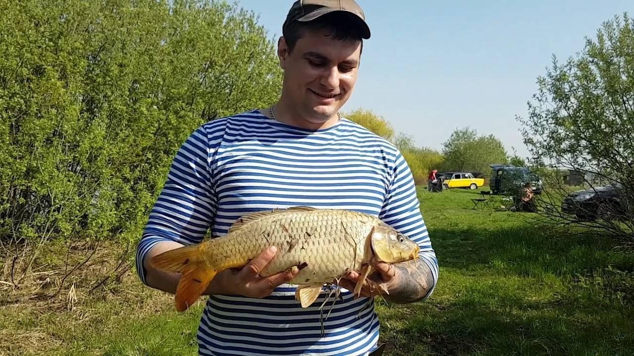 Рыбалка на оке: особенности вылова на реке, бесплатные места, базы на прудах серпуховского района