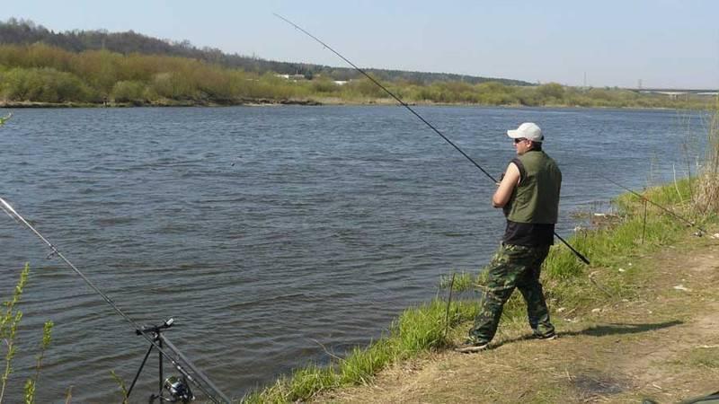 Дубна - календарь рыболова. рыбалка в дубне, график клёва рыбы.