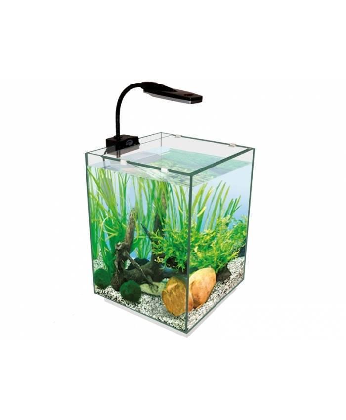 Подготовка и правильный запуск нового аквариума