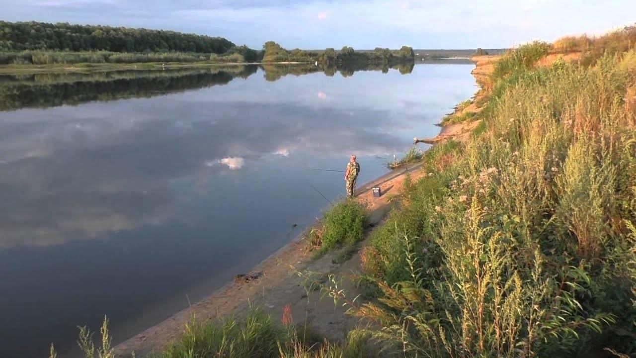 Река уча - рыбалка в подмосковье - газета рыбак