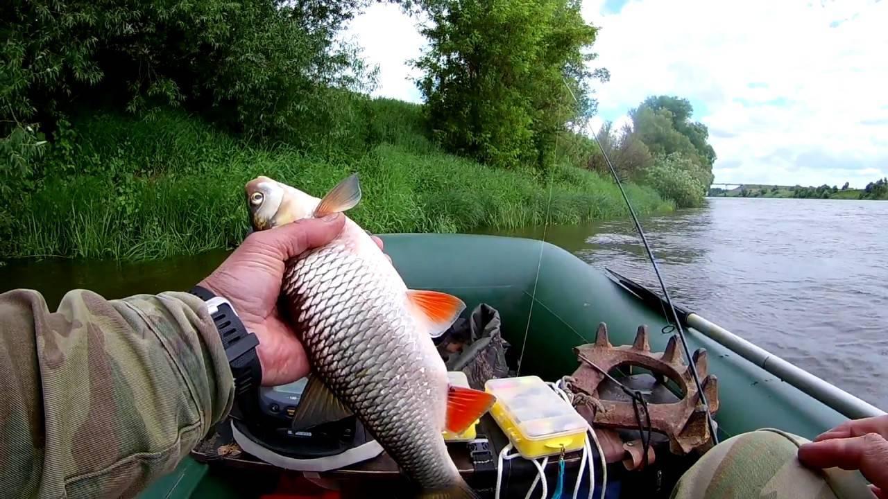 Рыбалка на оке в рязанской области: отчеты, базы, места – суперулов – интернет-портал о рыбалке