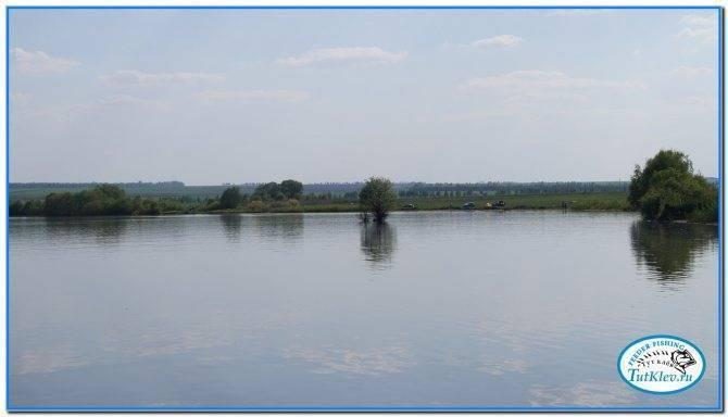 Старооскольское водохранилище википедия
