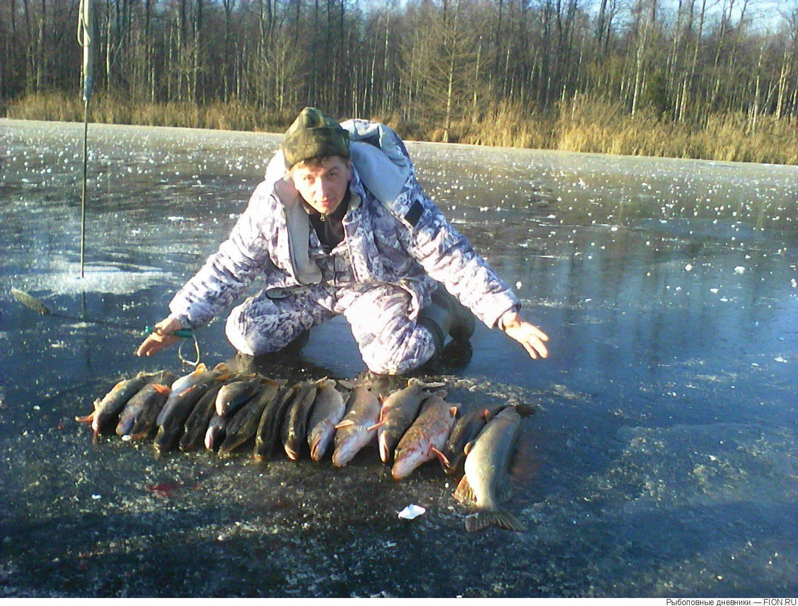 Клинский рыбхоз- платная рыбалка