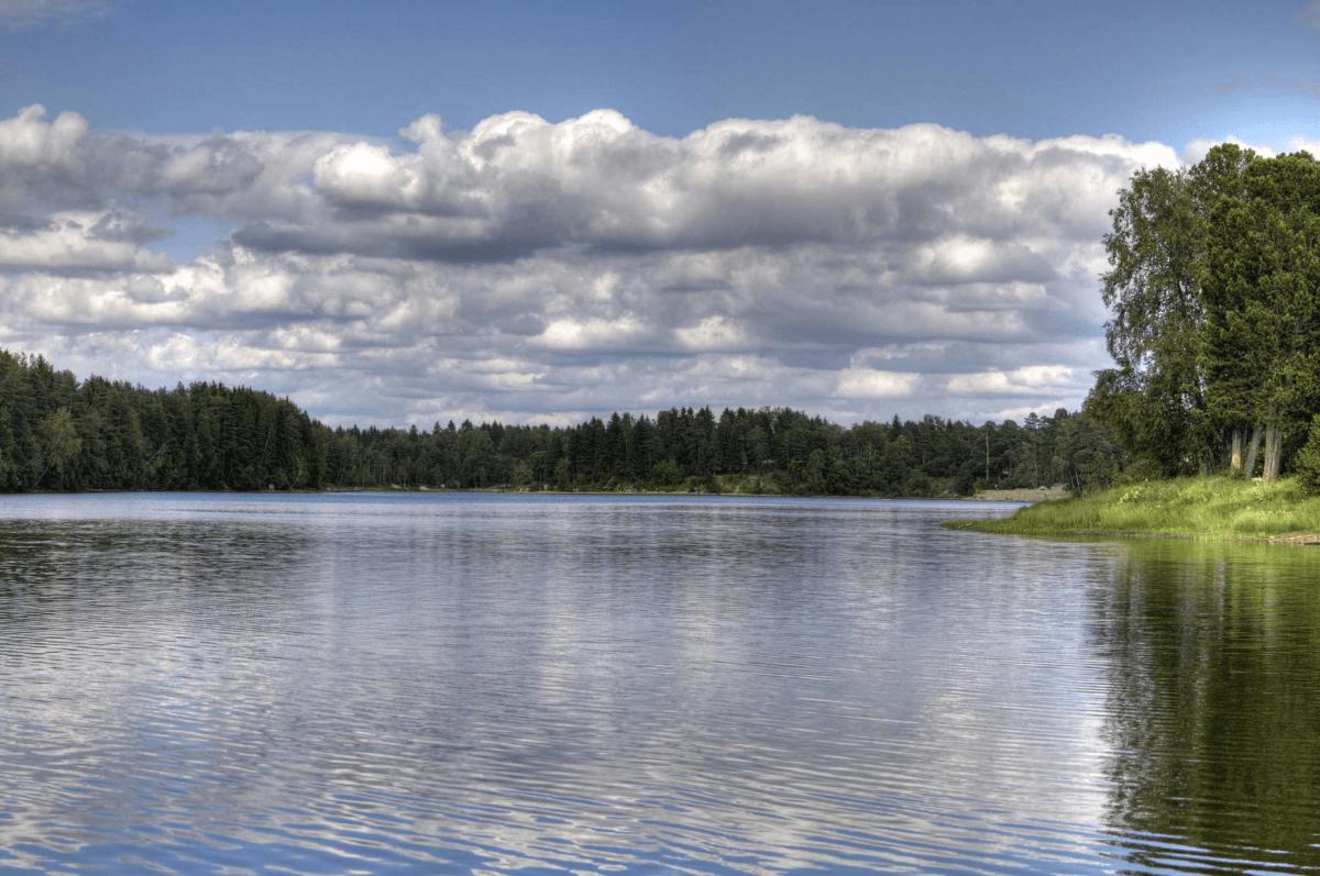 15 лучших рыболовных мест ленинградской области – рыбалке.нет