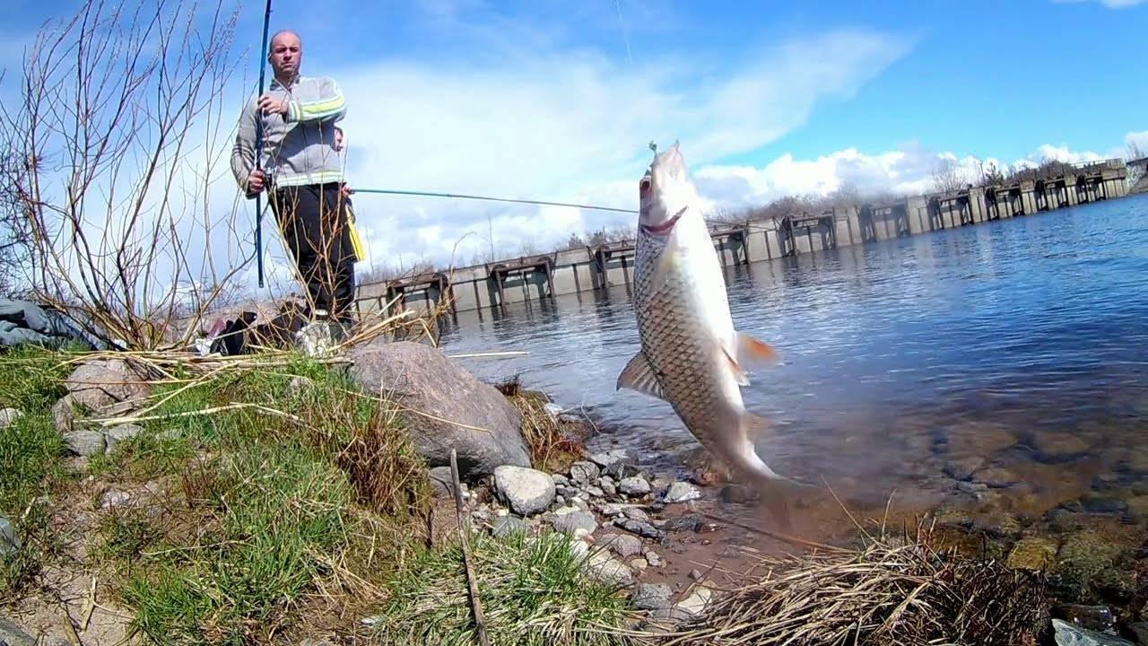 Особенности рыбалки в республике марий эл