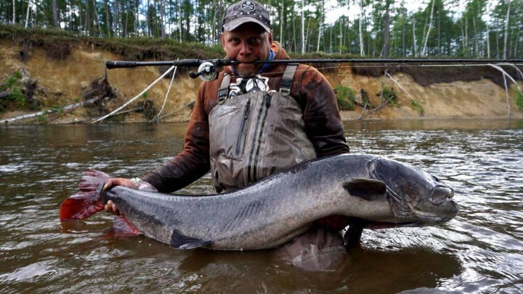 Платная рыбалка в якутии: рыболовные туры, охотничьи базы и водоемы якутии