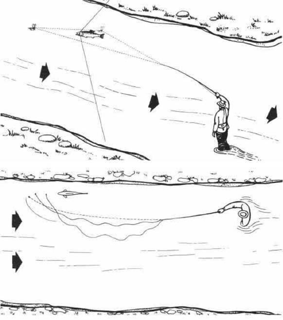 Ловля нахлыстом - что это такое? все для начинающих ловцов на мушки, голавль, хариус и плотва летом