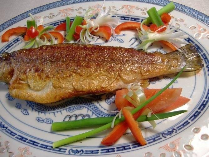 Рыба для ухи: как правильно выбрать вкусную рыбу, как варить