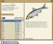 Где встречается рыба пескарь, особенности ее поведения и снасти для ловли