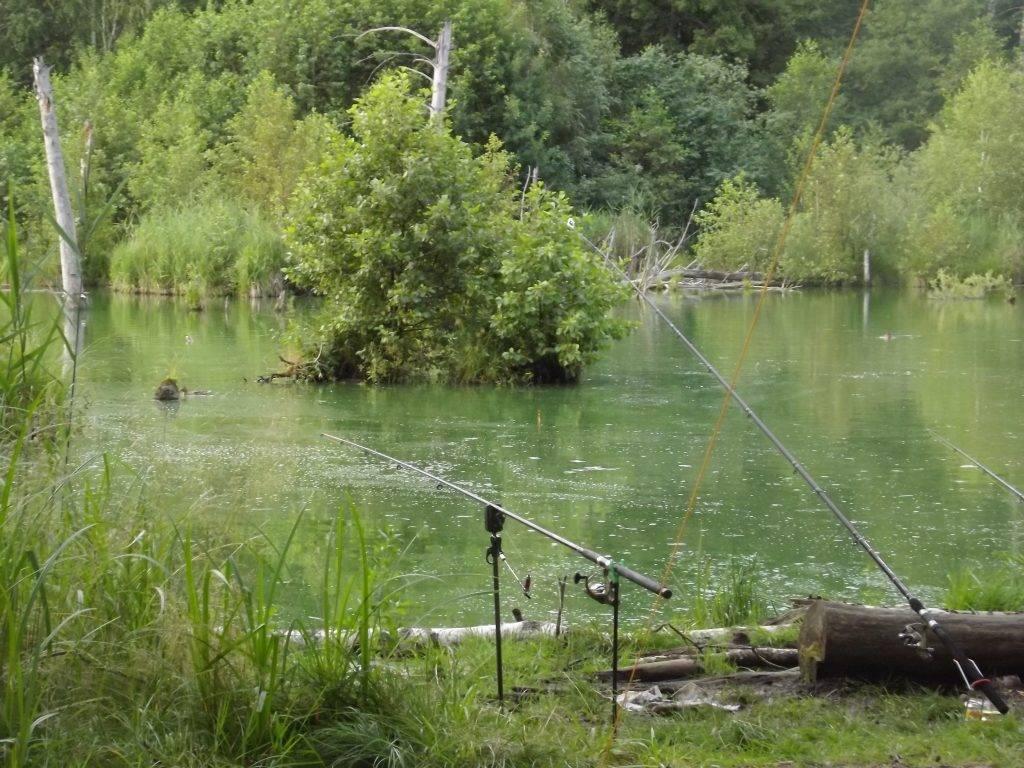 Рыбалка в воронежской области. отчеты с рек и озер