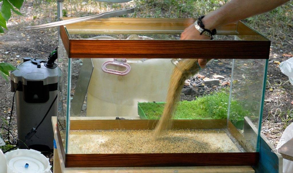 Оборудование для аквариума что нужно для запуска и ухода • блог аквариумиста
