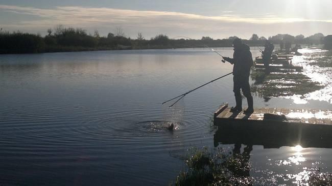 Cтрелецкий ручей рыбалка – обзор платного водоема
