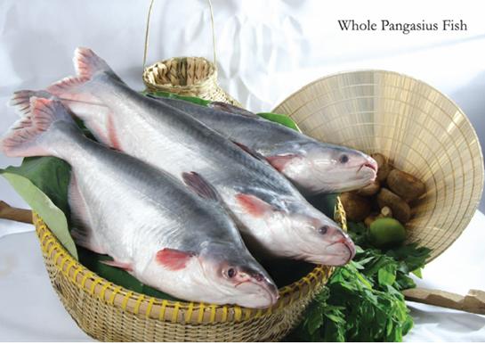 Рыба пангасиус: среда обитания, польза и вред, как правильно приготовить