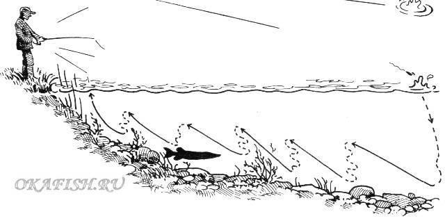 Ловля на спиннинг: ранней весной, в запрет, с лодки, с берега