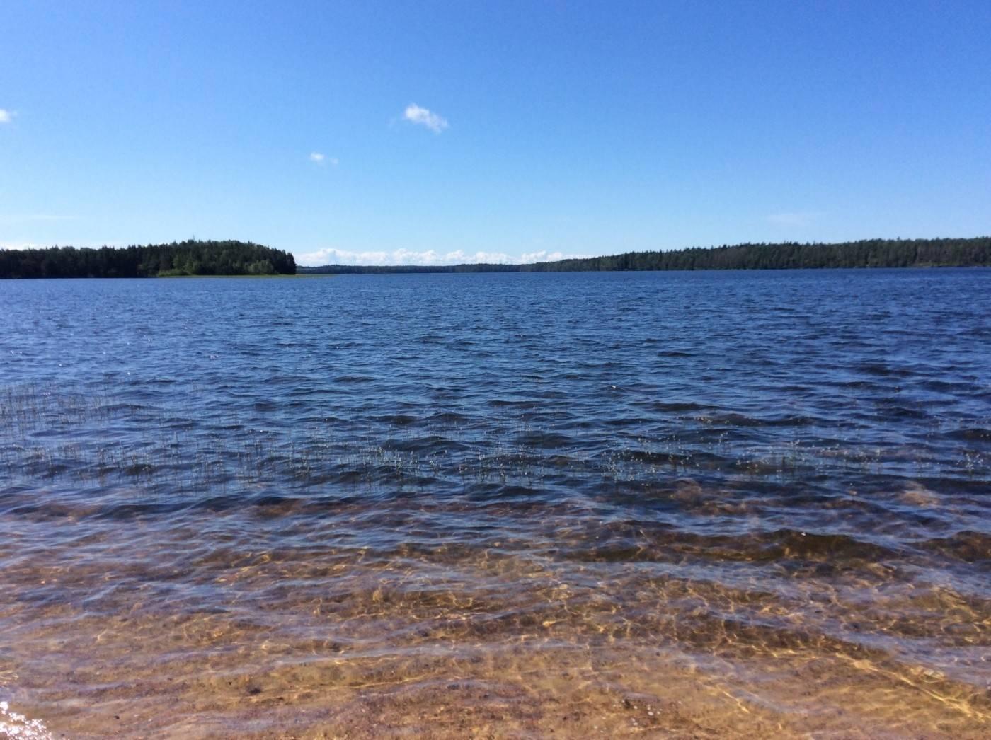 Белое озеро вологодская область - семейный досуг