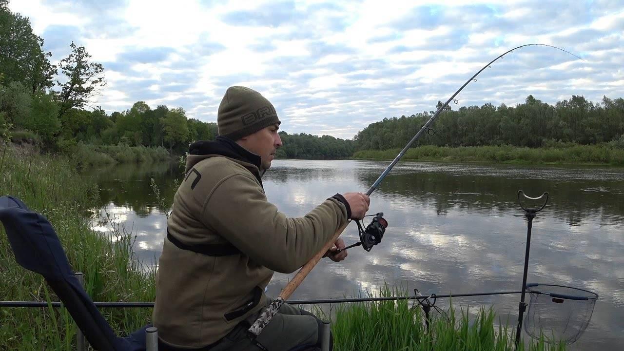 Лунный календарь рыболова по месяцам