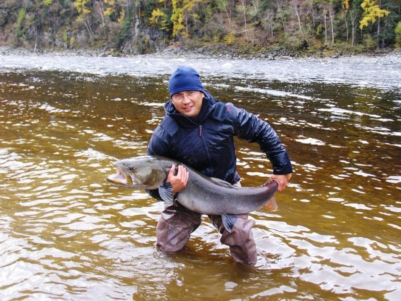 Рыбалка на реке Катунь