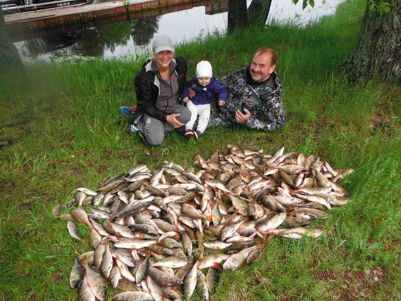 Базы отдыха на рыбинском водохранилище (для отдыха с рыбалкой) - цены