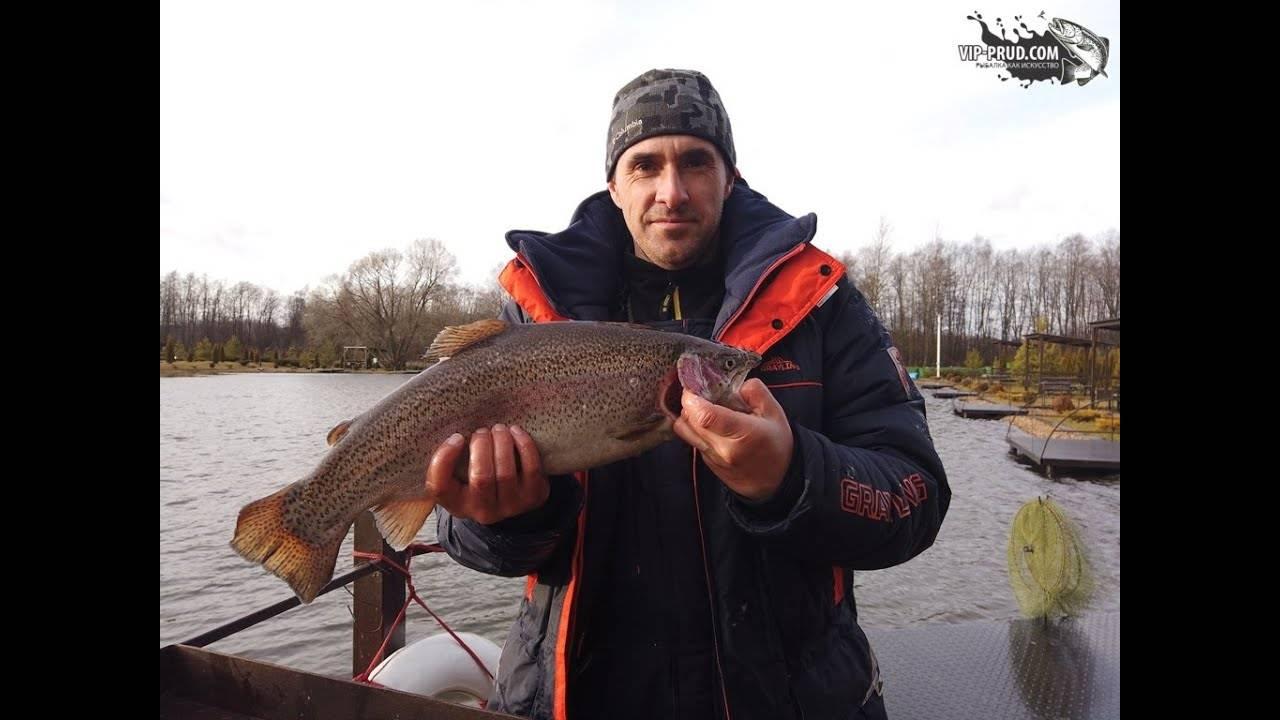 Ловля на канале. о чем хотят знать рыболовы?