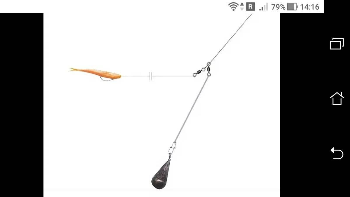 Ловля окуня на отводной поводок: монтаж оснастки, подбор приманки и проводки