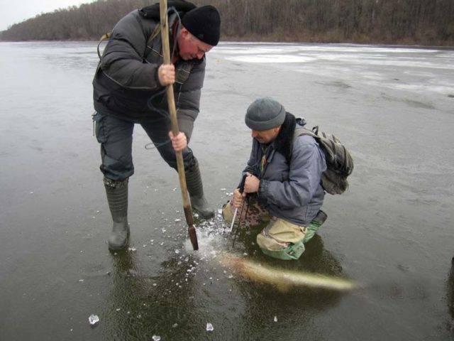 Где бурить лунки на зимней рыбалке: советы новичкам - всё о рыбалке - медиаплатформа миртесен
