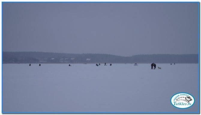 Oskolfish.ru рыбалка в старом осколе и белгородской области - главная