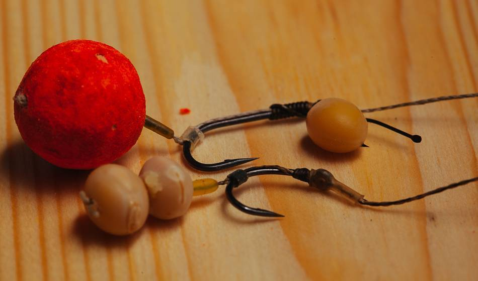 Вареная, жареная и пюре. на какую картошку лучше всего ловить карпа