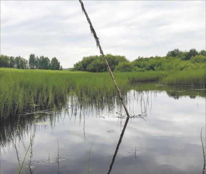 Сплав по реке. рыбалка сплавом. сплавная ловля рыбы || сеть рыболовная наплавная