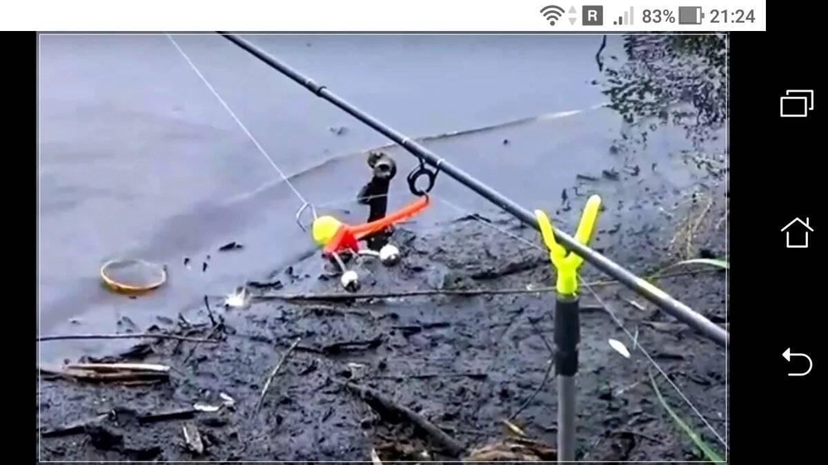 Донки (51 фото): чем донная снасть отличается от фидеров? ходовые удочки для донного лова, закидушка для ловли рыбы и другие варианты. что это такое в рыбалке?