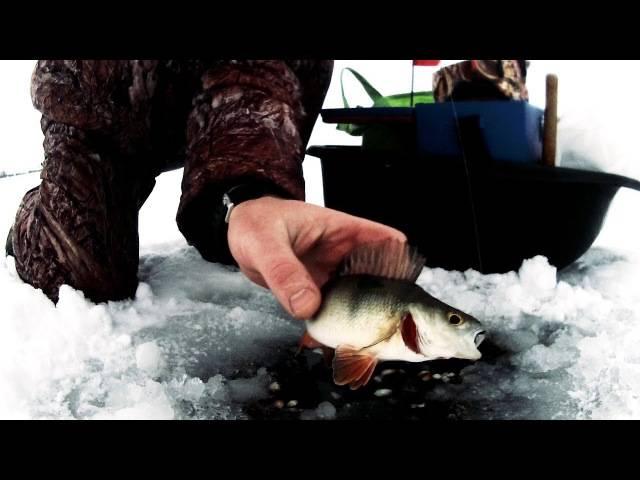 Ловля на безмотылку зимой — тактика и приемы