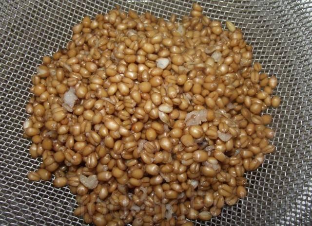 Как запарить пшеницу для рыбалки - про рыбалку