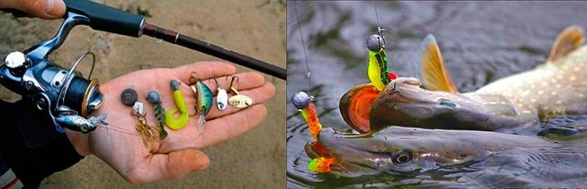 Ловля щуки летом на спиннинг: с берега, с лодки. рыбалка на щуку в июне