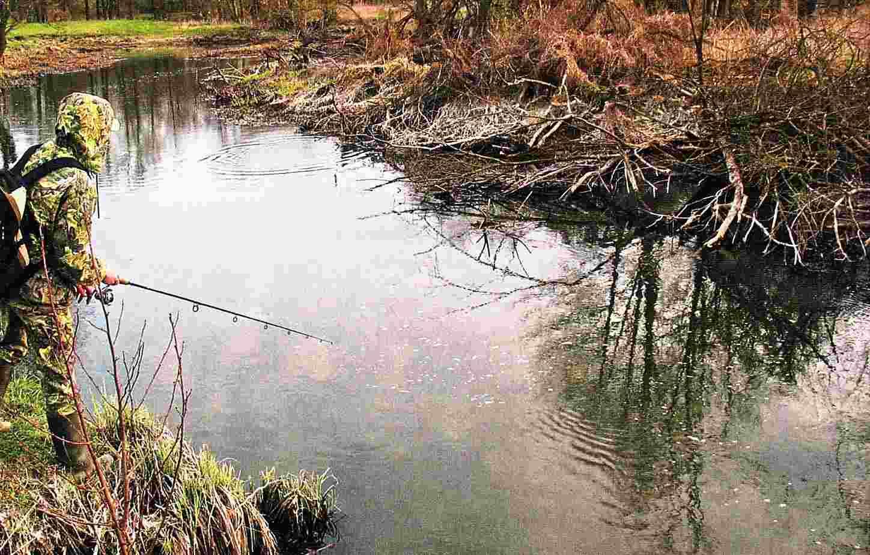 Щука в мутной воде – поведение, приманки, как поймать