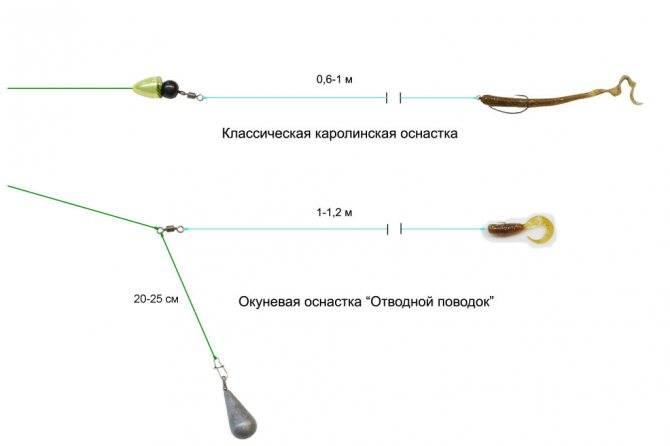 Ловля окуня: на отводной поводок, как сделать своими руками, принцип ловли