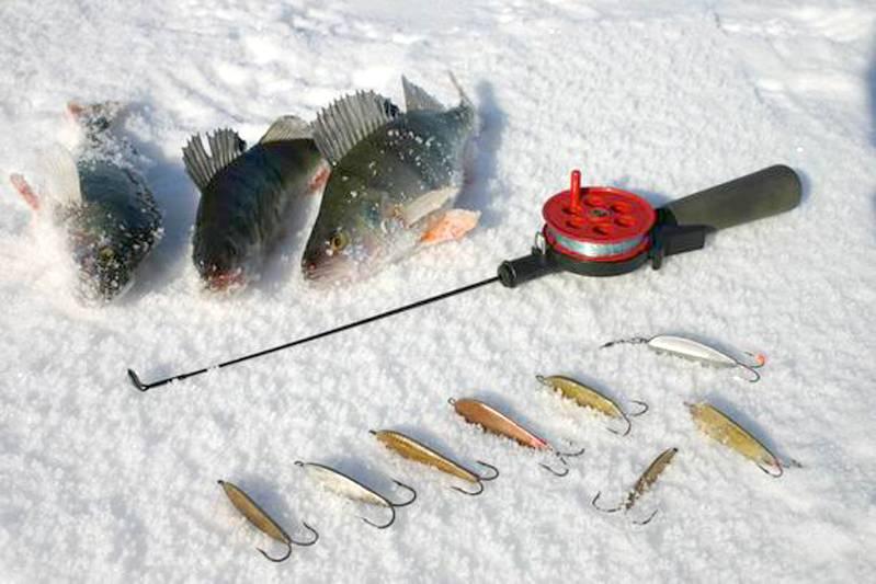 Ловля окуня зимой на мормышку, топ 7 уловистых мормышек