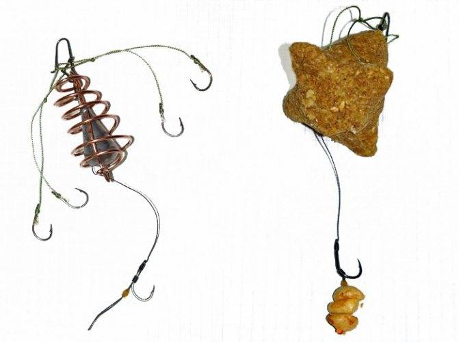 Ловля карпа на пружину - приготовление каши, оснастка, видео о спортивной ловле