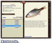 Обыкновенный пресноводный горчак: описание и среда обитания, на что клюёт рыба, способы ловли