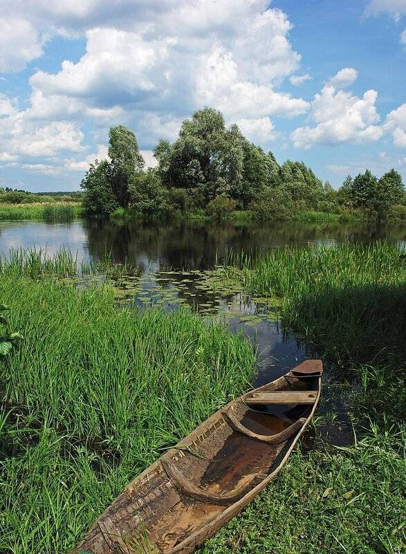Река проня (рязанская область): описание, особенности, фото